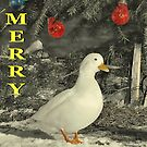 Christmas duck 2 by relayer51