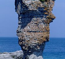 Flowerpot Island by hummingbirds
