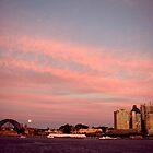 Full Moon Rising - Sydney Australia by Alfredo Estrella