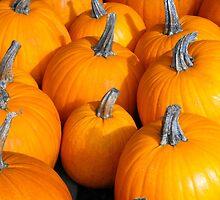 Pumpkins! by christazuber