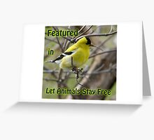 Goldfinch Banner Greeting Card
