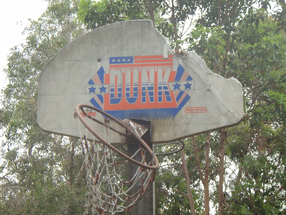 slam dunk, old and destroyed by nicolaelizabeth