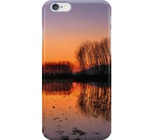 Naked trees iPhone Case/Skin