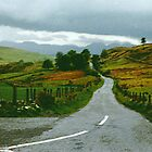 "The Road Less Travelled - Co. Down, Ireland by Edmond J. [""Skip""] O'Neill"