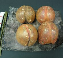 Peaches Delight by Karmen Chak