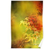 Shades of Autumn III Poster