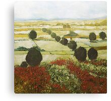 Wildflower Valley Canvas Print