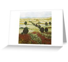 Wildflower Valley Greeting Card
