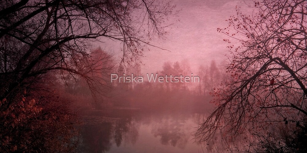 Misty morning light by Priska Wettstein