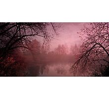 Misty morning light Photographic Print