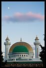 Habib Bourguiba's Mausoleum by Tim Topping