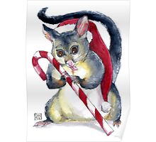 Possum & Candy Cane Christmas Card Poster