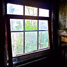 Looking From Old Miner's Shack, Index, Washington by Scott Johnson