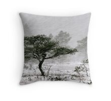 24.11.2010: Winter Storm Throw Pillow