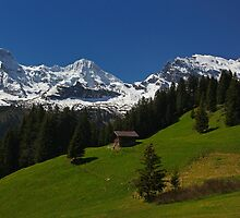 Hiking in the Swiss Alps by Anthony Cornelius