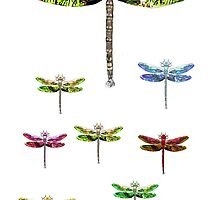 dragonfly squadron by Tom Conway