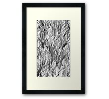 Monochrome Branches Framed Print
