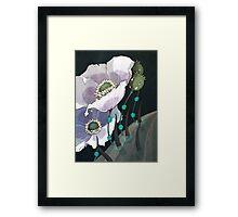 White Opium Poppies  Framed Print