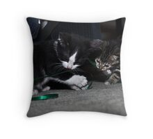 """ Kitten Christmas Wrap "" Throw Pillow"