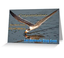 Let Animals Stay Free Banner Challenge Greeting Card