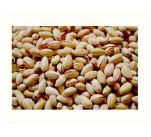 Pistachio Nuts Art Print