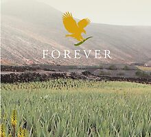 Forever Living: Aloe Field  by yetzenialeiva