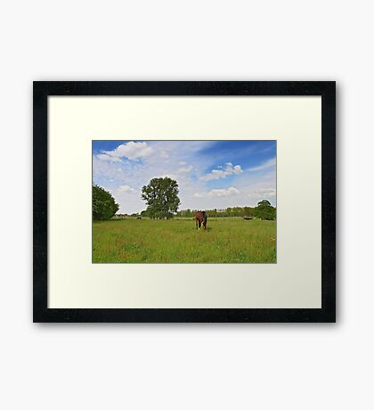 Landscape with Horses in Flanders Framed Print
