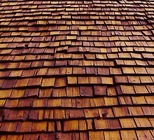 Timber roof in Nairobi, Kenya by Atanas Bozhikov Nasko