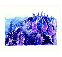 High Country Spruce Art Print