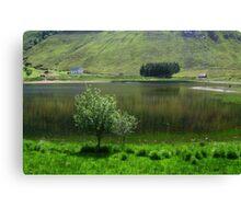 Lake idyll in green  Canvas Print