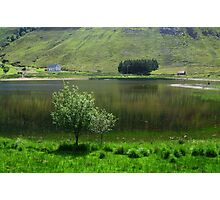 Lake idyll in green  Photographic Print