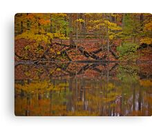 Seasons through the lens #2 Canvas Print