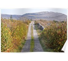 Mullaghmore in Autumn Poster
