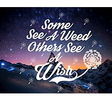 Some see a weed others see a wish... Photographic Print