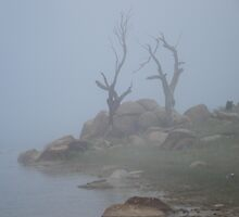 Lake Eucumbene - November Fog by wetnall