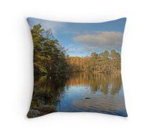 High Dam Throw Pillow