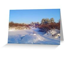 River in January.Sask, Canada Greeting Card