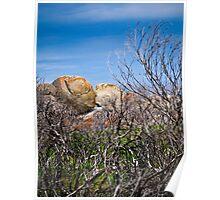 distant rocks Poster