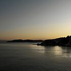 Skiathos at Dusk  by larry flewers