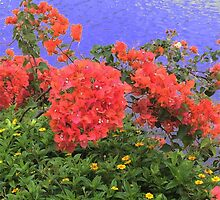 Flowers of Hawaii by queenknightly