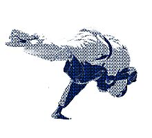 Judo Throw in Gi 2 Photographic Print