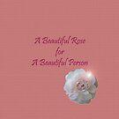 Beautiful rose; Beautiful person by sarnia2