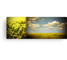 submerged in gold Canvas Print
