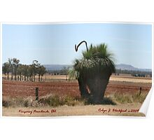 Xanthorrhoea macronema Grass Tree Poster