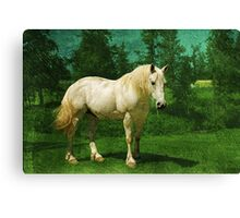 Earthbound Unicorn Canvas Print