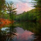 Evening at the Reservoir by Lori Deiter