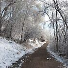 Winter Path by bluerabbit