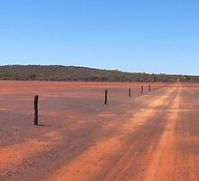 Panoramic:  Outback Gilgai by Anne-Louise Vague