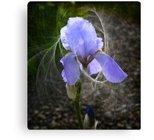 Fairy Tails Canvas Print