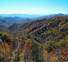 Blue Ridge Pkwy Views by Lee Tucker